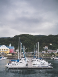 Explored the local marina.