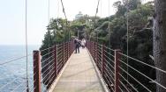More suspension bridges.